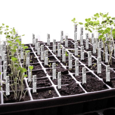 planttags.com.au-plant-tray-tags
